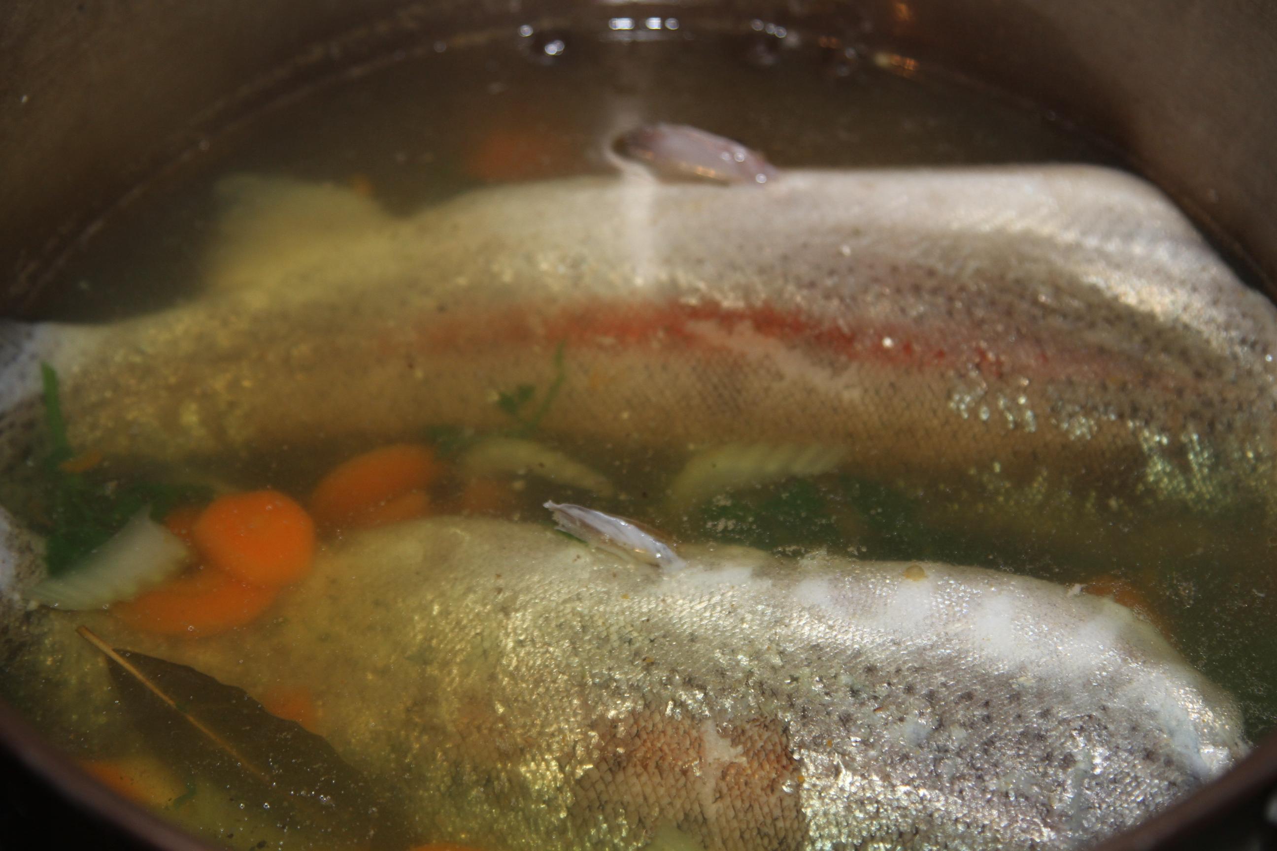 gotowana ryba w galarecie