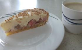 Ciasto rabarbarowe z puszystą masą budyniową