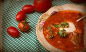 Zupa pomidorowa z pomidorów i gałązek krzewu pomidora